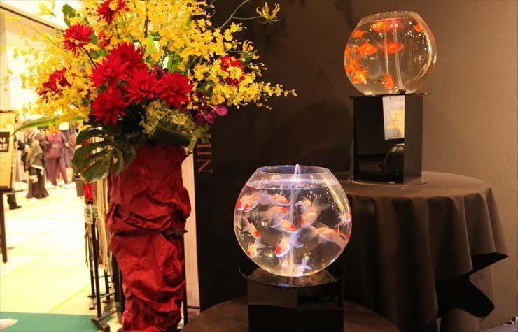 東京都 短期イベント 30cm金魚鉢水槽  設置事例 メイン画像