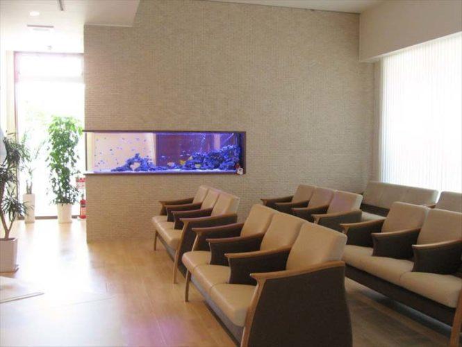 愛知県丹波群 整形外科様  220cm海水魚水槽  設置事例 メイン画像