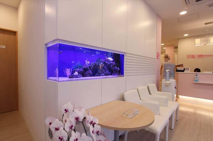 神奈川県相模原市 歯科クリニック様  120cm海水魚水槽  設置事例 メイン画像