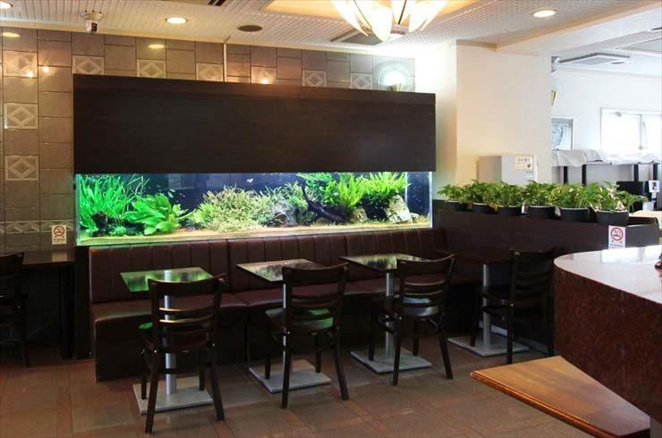 神奈川県川崎市 ホテル様  300cm淡水魚水槽  設置事例 メイン画像