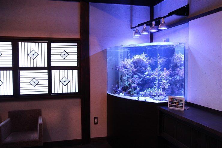 神奈川県 川崎市 料亭 特殊海水魚水槽 設置事例 メイン画像