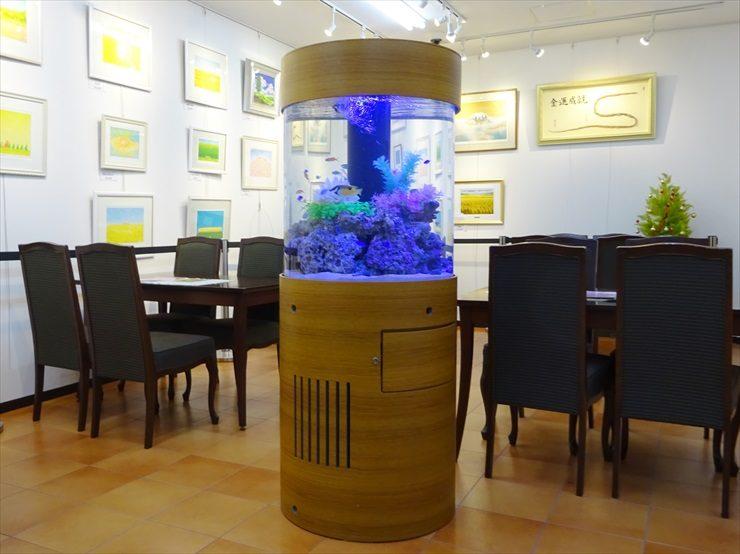オフィスの待合室 海水円柱水槽 設置事例 水槽画像2