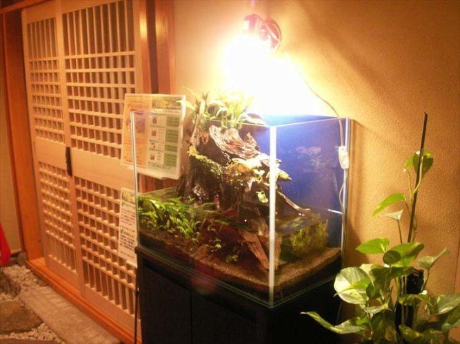 ホテルオークラ東京ベイ(利休)様  水槽設置事例