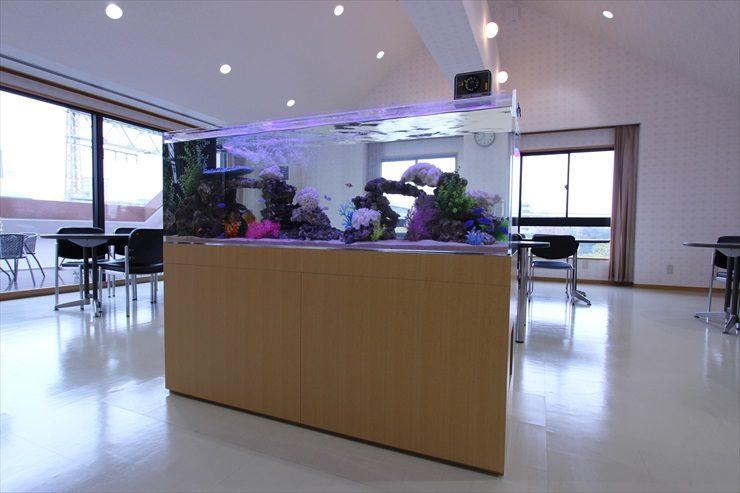 オフィス内中央 150cm海水魚水槽 設置事例 メイン画像