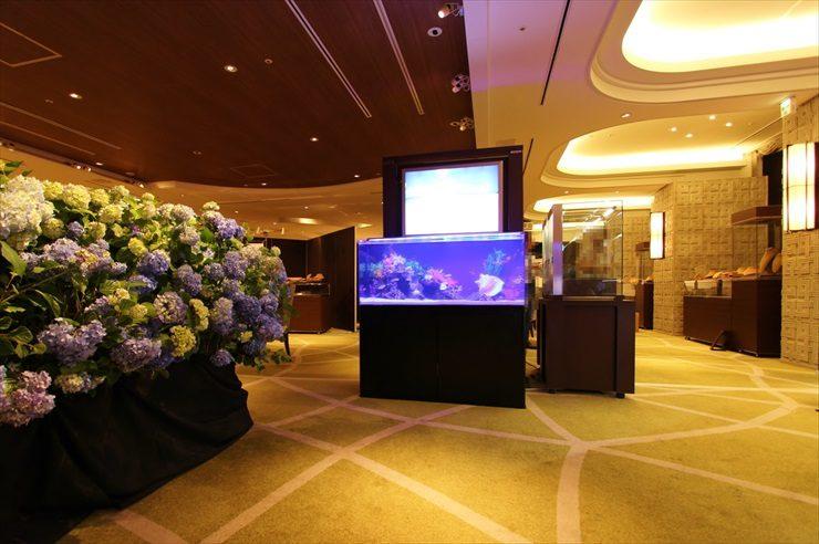短期イベント 120cm海水魚水槽 設置事例 メイン画像