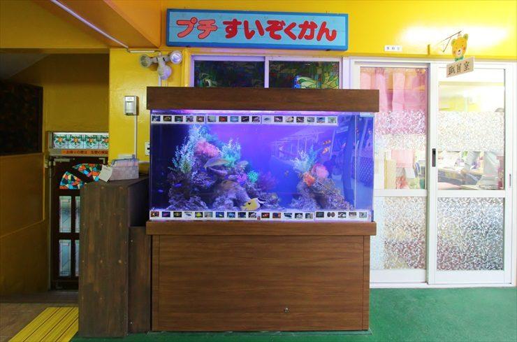 浦和めぐみ幼稚園様 150cm海水魚水槽 設置事例 水槽写真
