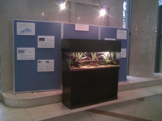 練馬区役所様  150cm淡水魚水槽  設置事例 メイン画像