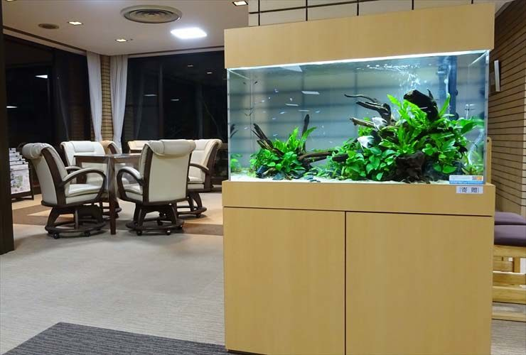 愛知県名古屋市 老人ホーム様  90cm淡水魚水槽  設置事例 水槽画像2