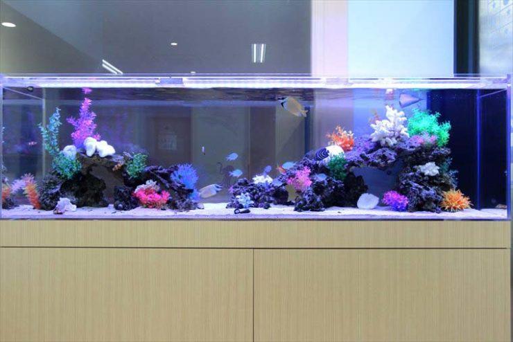 小児科の待合スペースに設置  アクアリウム(180cm海水魚水槽)の事例 メイン画像