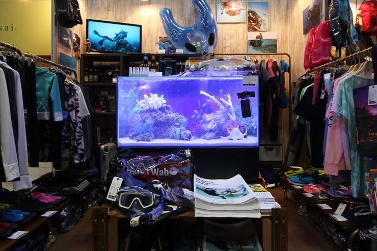 東京ビックサイト 短期イベント  90cm海水魚水槽  設置事例 メイン画像