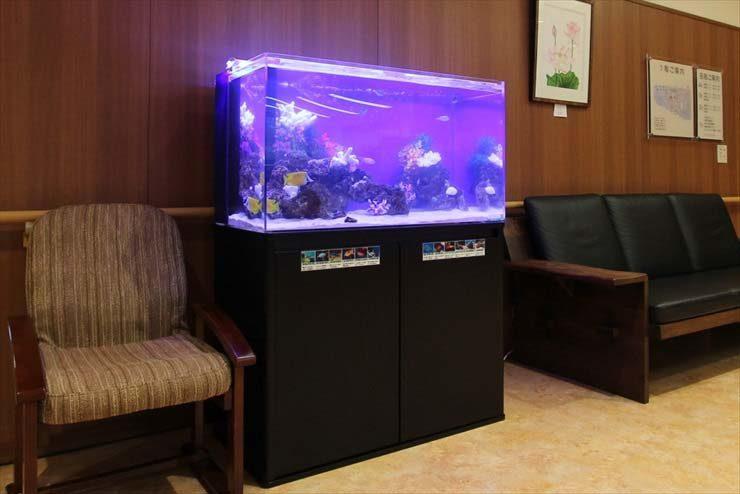練馬区 老人ホーム様  90cm海水魚水槽  設置事例 メイン画像