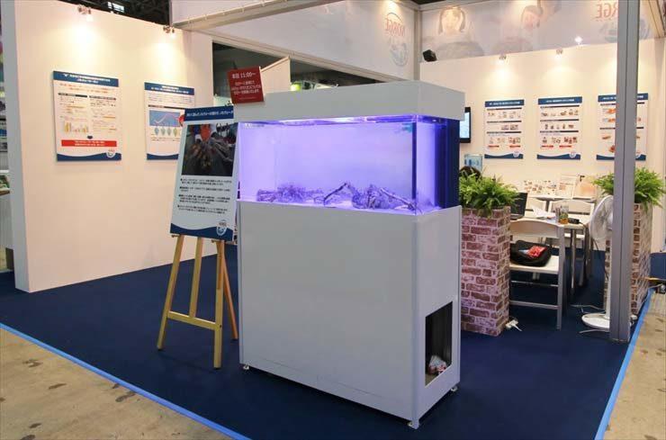 東京ビックサイト 短期イベント  120cm海水水槽  設置事例 メイン画像