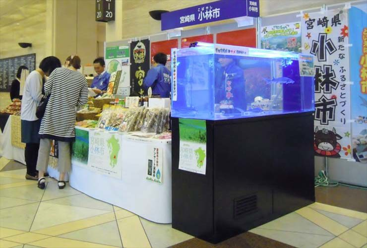 短期イベント  150cm淡水魚水槽  設置事例 メイン画像