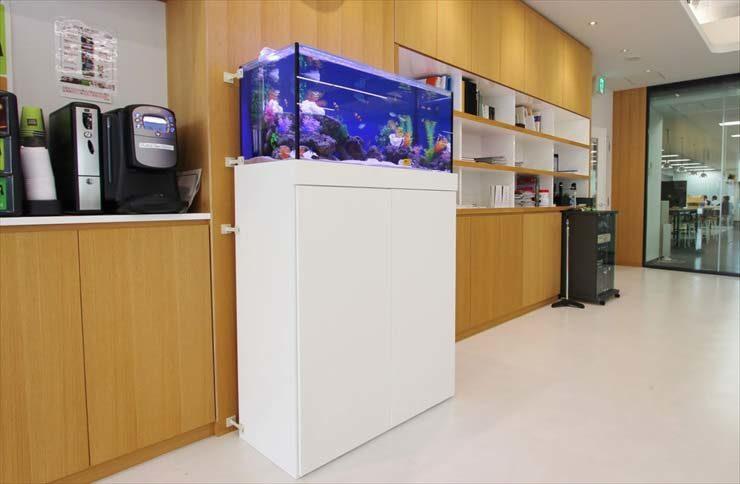 中央区銀座 不動産会社様  90cm海水魚水槽  設置事例 メイン画像
