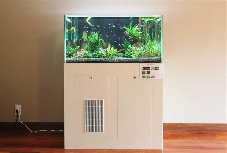 神奈川県鎌倉市  旅館様  90cm淡水魚水槽  設置事例 メイン画像