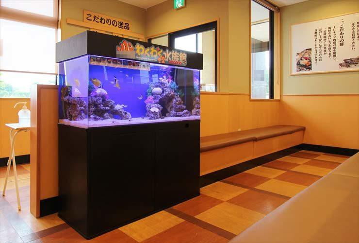 町田市  飲食店様  120cm海水魚水槽  設置事例 メイン画像