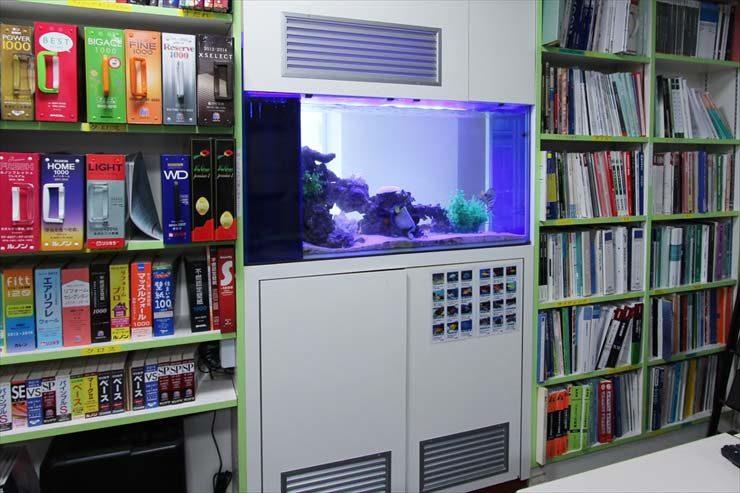 荒川区 企業様  120cm海水魚水槽  設置事例 メイン画像