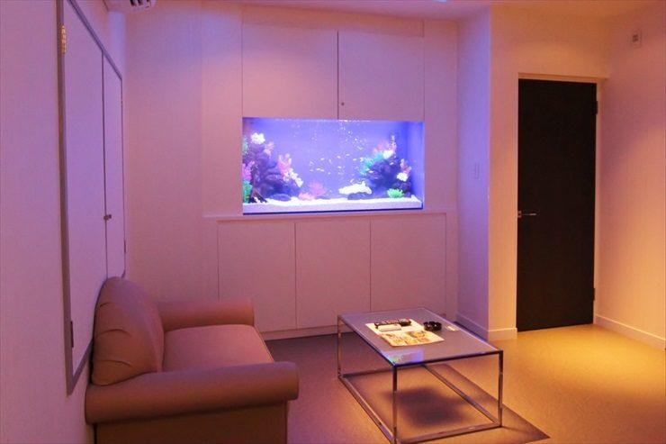 ホテル様  150cm淡水魚水槽  設置事例 メイン画像