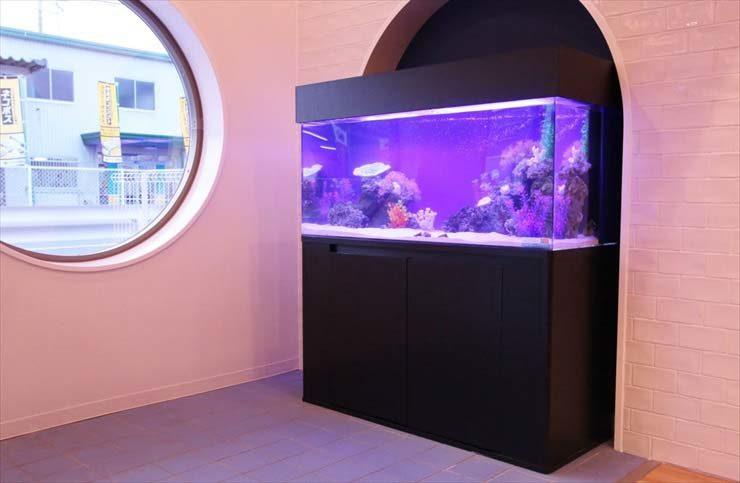 おの小児科様  120cm海水魚水槽  設置事例 メイン画像