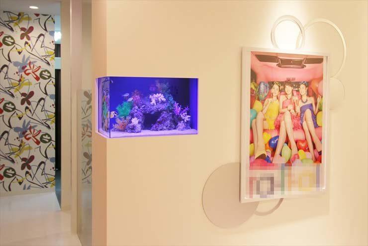 さいたま市大宮  サロン様  60cm海水魚水槽  設置事例 メイン画像