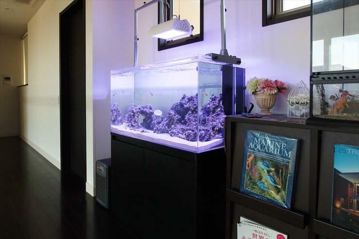 個人宅様  90cm海水魚水槽  設置事例 メイン画像