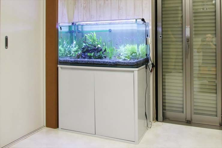 神奈川県川崎市  個人宅様  90cm淡水魚水槽  リニューアル事例 メイン画像
