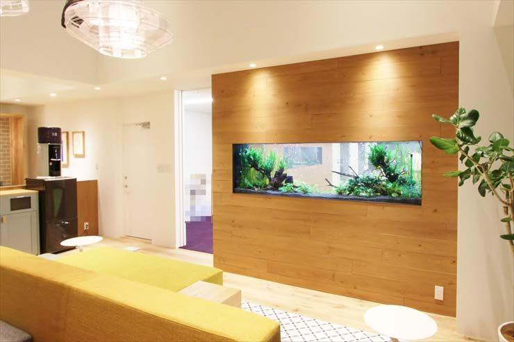 港区麻布十番 オフィスに設置  大型淡水アクアリウム2台(壁面水槽)の事例 メイン画像