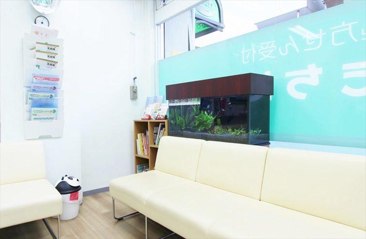 墨田区  薬局様  90cm淡水魚水槽  設置事例 水槽画像3