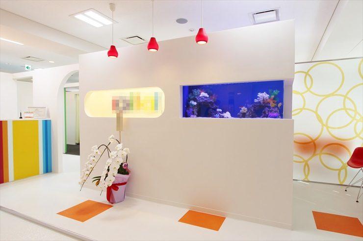 中央区銀座  サロン様  120cm海水魚水槽  設置事例 メイン画像