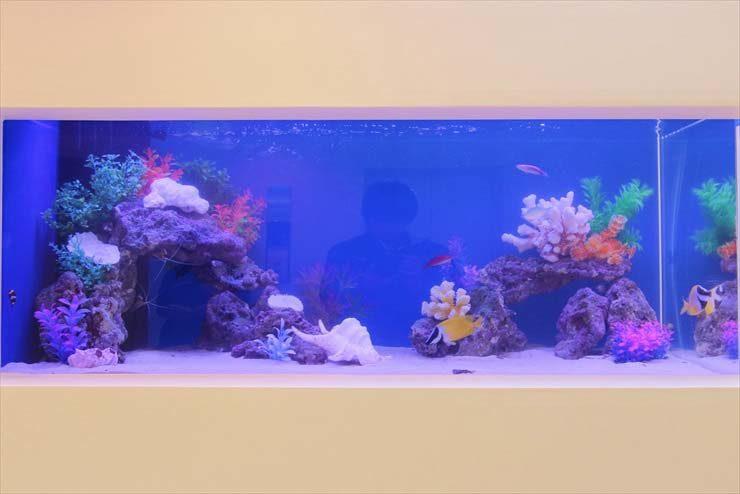 中央区銀座  サロン様  120cm海水魚水槽  設置事例 水槽画像2