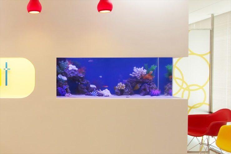 中央区銀座  サロン様  120cm海水魚水槽  設置事例 水槽画像3