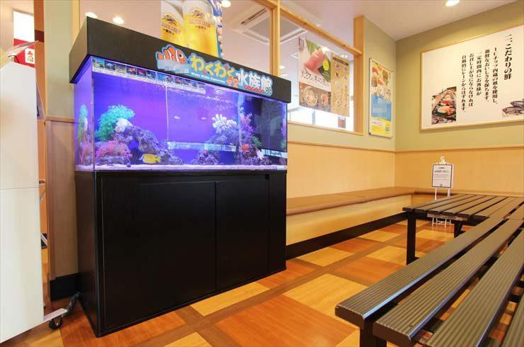 埼玉県ふじみ野市  飲食店様  120cm海水魚水槽  設置事例 メイン画像