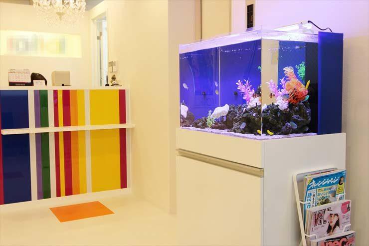 サロンの受付  60cm海水魚水槽  設置事例 メイン画像