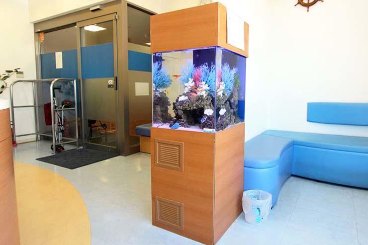 こどもクリニックに設置  アクアリウム(45cm海水魚水槽)の事例