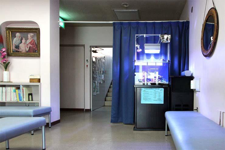 整形外科の待合室  60cm海水魚水槽  設置事例 メイン画像