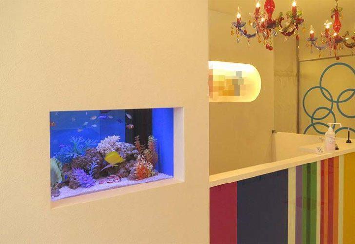 美容サロンの受付  60cm海水魚水槽  設置事例 メイン画像