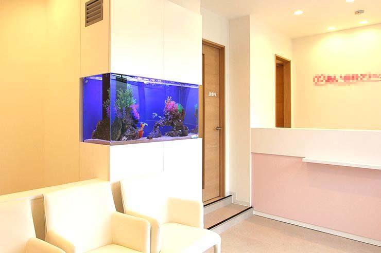 八王子市  歯科クリニック  110cm海水魚水槽  設置事例 メイン画像
