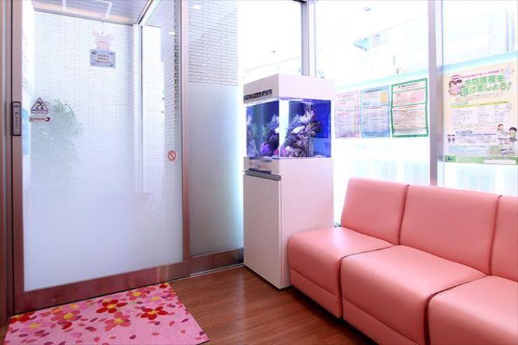 江東区クリニックに設置  アクアリウム(海水魚水槽)の事例  メイン画像