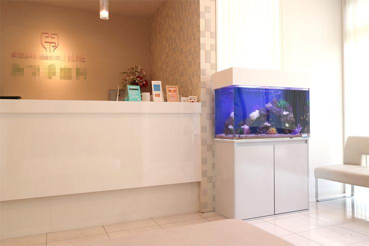 大阪府交野市  歯科クリニック  90cm海水魚水槽  設置事例 メイン画像