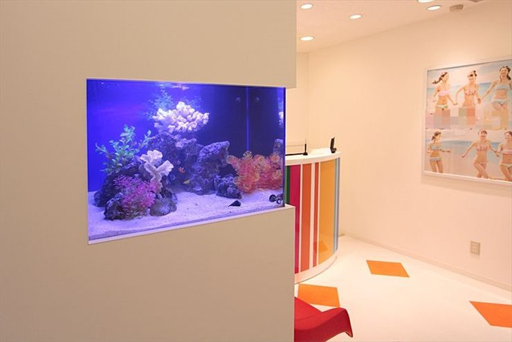 渋谷区  サロン  60cm海水魚水槽  設置事例 メイン画像