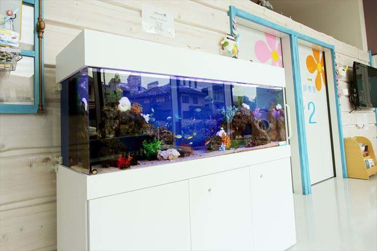 こどもクリニックに設置 アニメ映画のような150cm海水魚水槽の事例  メイン画像