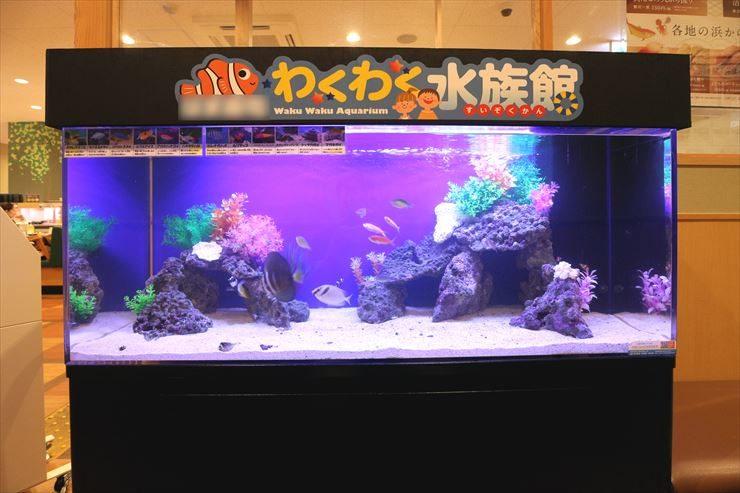 神奈川県川崎市  飲食店  120cm海水魚水槽  設置事例 メイン画像