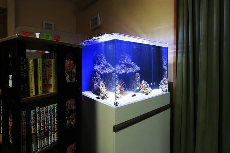 神奈川県横浜市  眼科の待合室  60cm海水魚水槽  設置事例 メイン画像