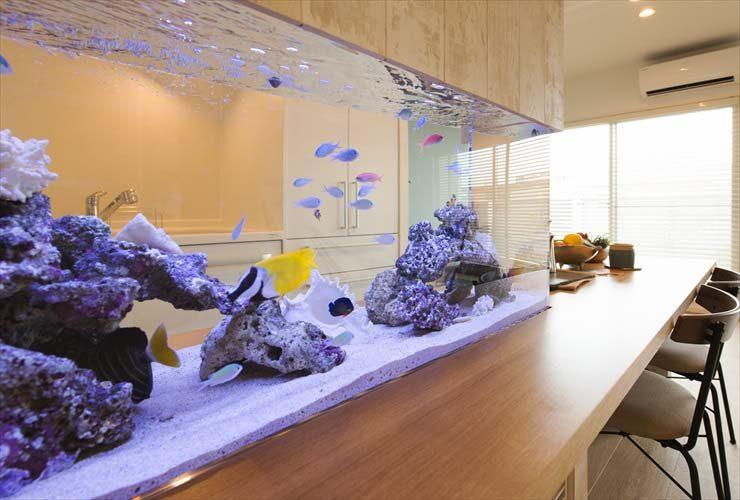 住友林業株式会社様  120cm海水魚水槽  設置事例 メイン画像