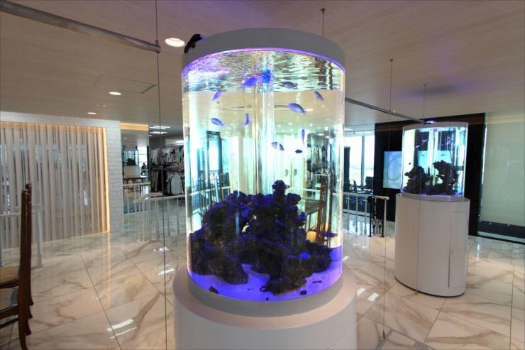 東京都目黒区 企業様  水槽設置事例 メイン画像