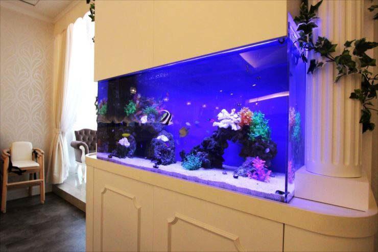 東京都豊島区 飲食店様  120cm海水魚水槽  設置事例 メイン画像