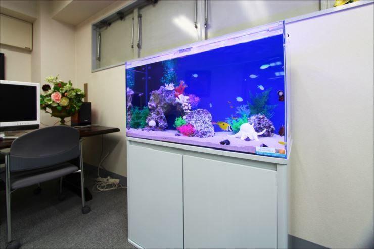 東京都豊島区 企業様  90cm海水魚水槽  設置事例 メイン画像