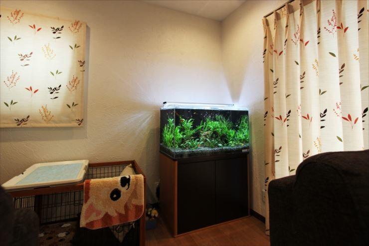 個人宅様  90cm淡水魚水槽  設置事例 水槽画像2