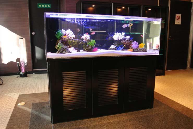 東京都台東区 企業様  150cm海水魚水槽  設置事例 メイン画像