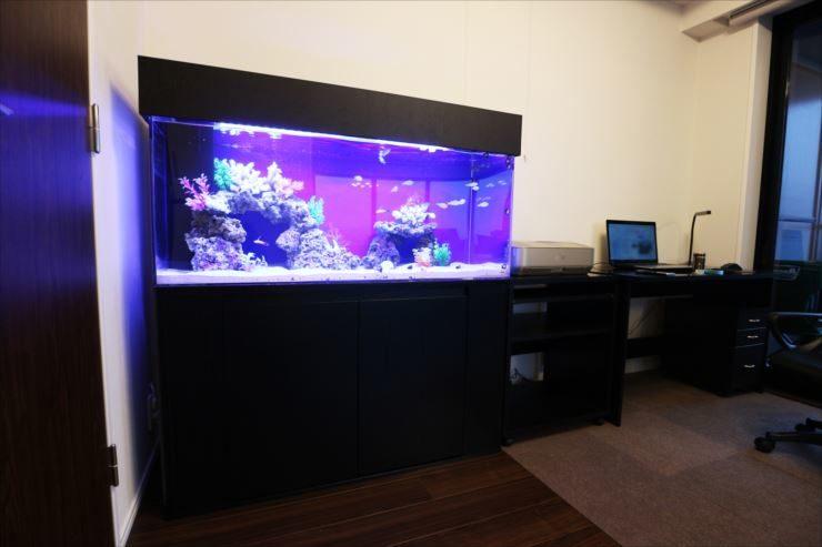 神奈川県川崎市 個人宅の書斎 120cm海水魚水槽 設置事例 メイン画像